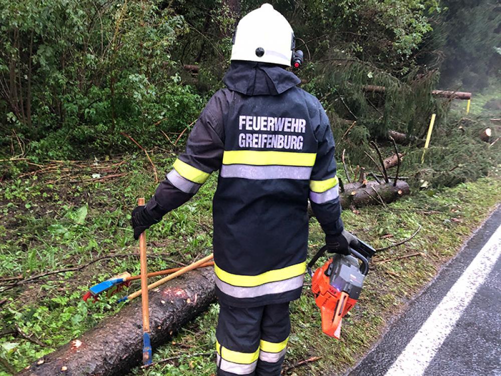 Schwerer Forstunfall am Kerschbaum